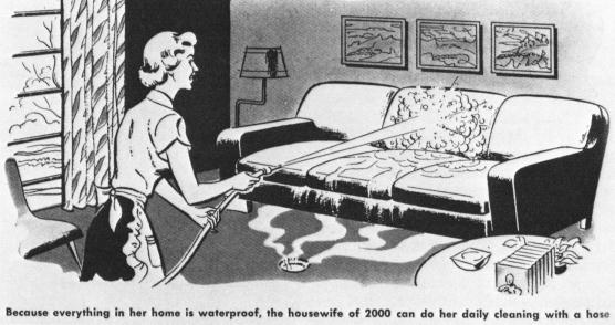 retro vintage cleaning comic 50s lady