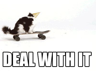 cat deal with it
