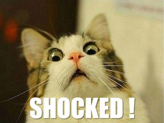 shocked lolcat