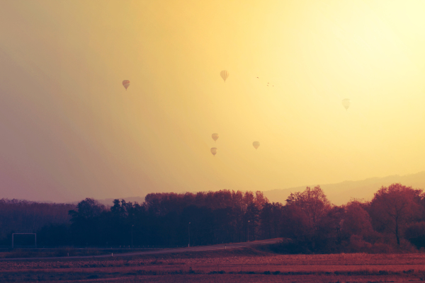 freedom-hot-air-balloons-orange-1567