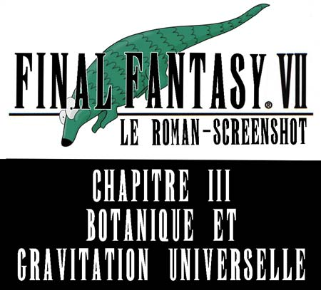 Final fantasy 7 le roman screenshot chapitre 3